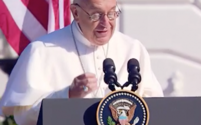 Francis Pope?